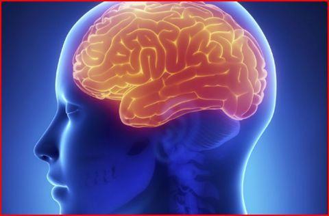 Creierul e o bună armă, dar un stăpân prost